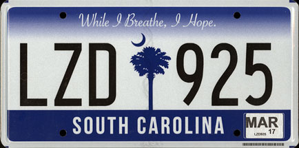 American License Plate Pack | BeamNG